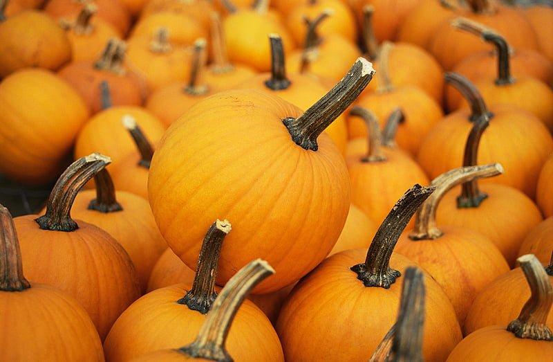 Glen Dow Pumpkin Peel